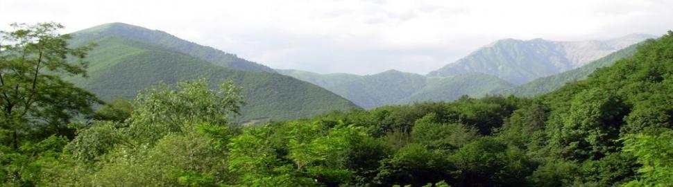 Azerbaijan naturs_Shaki