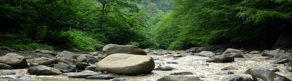 Masalli_Azerbaijan_nature